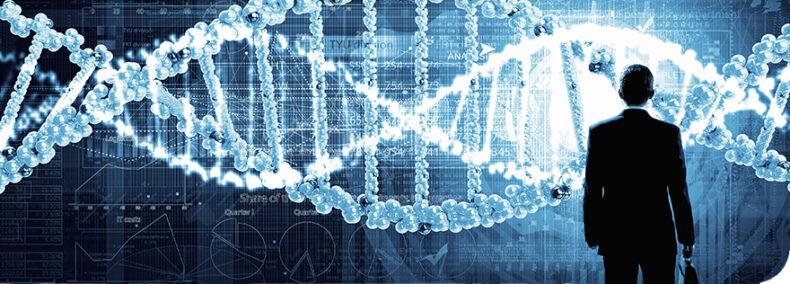 Gehirn: Die ewige Suche nach der Intelligenz