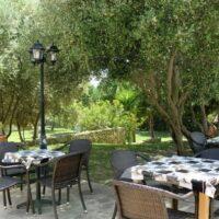 Casa Horizon - Garten und Terrasse