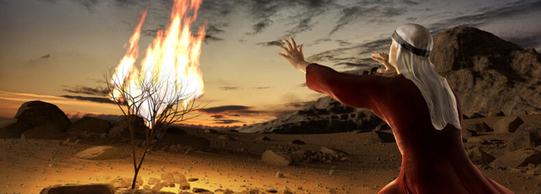Der Moses Code: Ein Film, dessen transformierende Kraft bisher unterschätzt wurde!