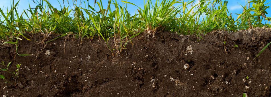 wie sich die zukunft der landwirtschaft buchstabiert horizonworld bewusst leben und denken