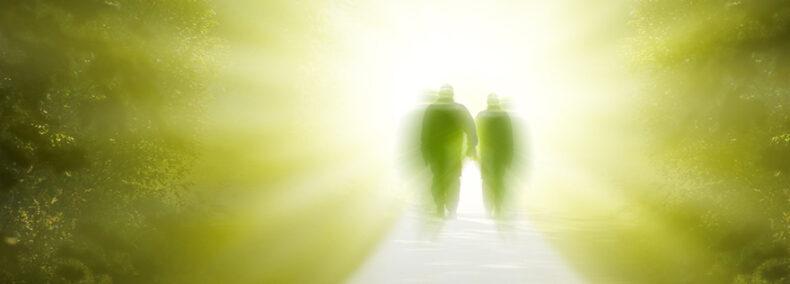 Illusion Tod Special Edition: Ewiges Bewusstsein aus wissenschaftlicher Sicht
