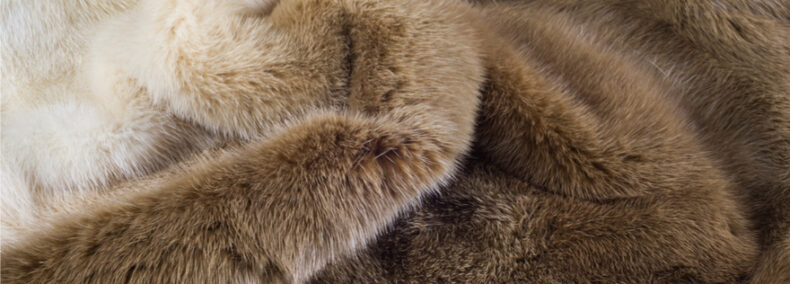 Norwegen: Schließung aller Pelzfarmen bis 2025