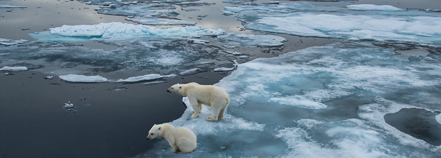 Klimawandel Bilder